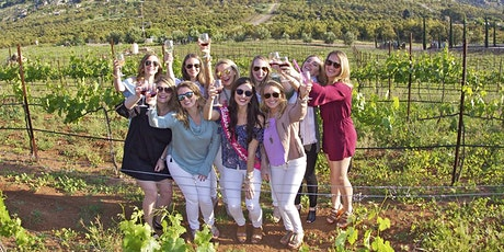 Enjoy a Tasty Adventure in San Diego on the Chauffeured Wine Country Tour! tickets