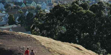 Bernal Hill Grassland Restoration Volunteer Project tickets