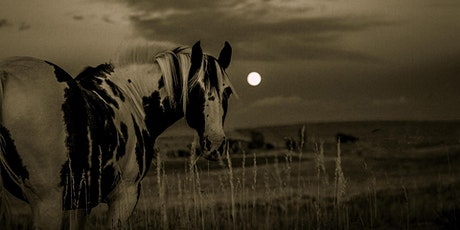 Full Moon Drumming Circle with Horses tickets