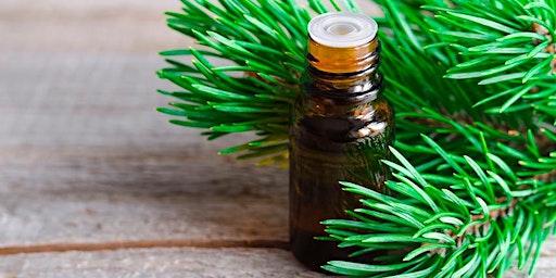 Conoscere il mondo dell'Aromaterapia  Corso Base