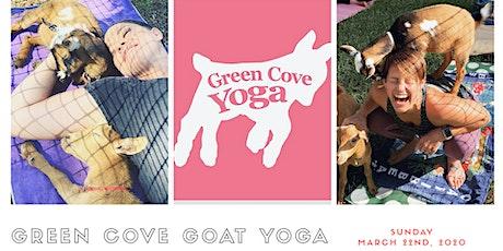 Green Cove Goat Yoga tickets