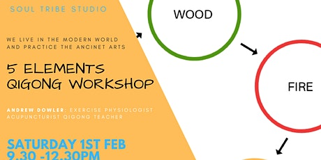 5 Elements Qigong Workshop with Drew tickets