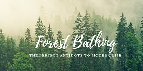 Hike & Forest Bathing tickets