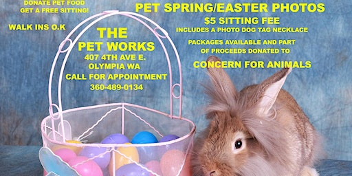 Easter Pet Portraits