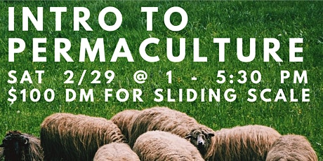 Introduction to Permaculture Day Long Intensive tickets