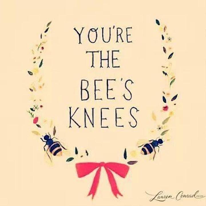 Beginners Bee Keeping Class image
