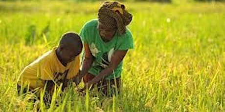 Mainstreaming Gender Approaches to Agricultural Extension Practices Course tickets