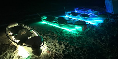 Neon NIGHT Transparent Kayak Miami Beach with 1 Glass Champagne included! tickets