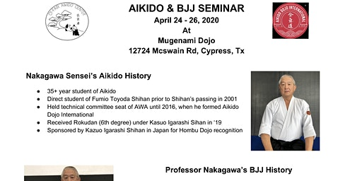 Aikido Dojo International Seminar - Houston TX