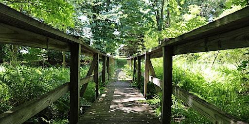 Monthly Trail Walk