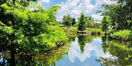 Composition + Storytelling Photo Tour at Mead Gardens tickets