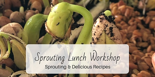 Sprouting Workshop & Lunch: Healthy Foods at Home