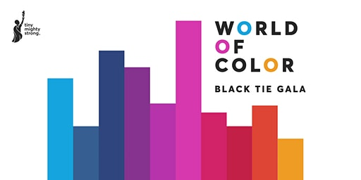 """World of Color"" TMS Black Tie Gala"
