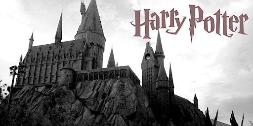 Harry Potter Dress up Day