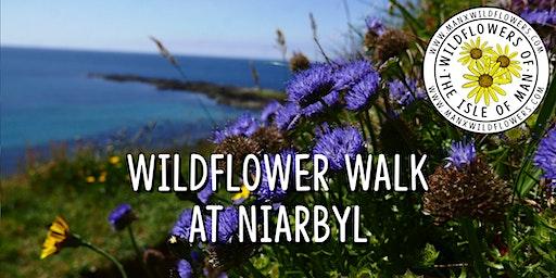 Wildflower Walk at Niarbyl