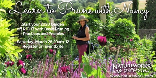 Learn to Prune with Nancy - Basic Principles and Practices