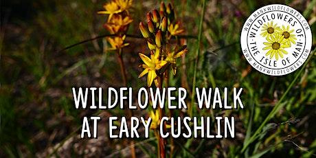 Wildflower Walk at Eary Cushlin tickets