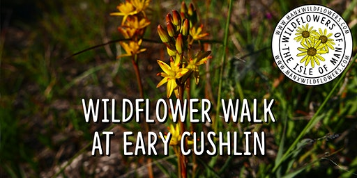 Wildflower Walk at Eary Cushlin