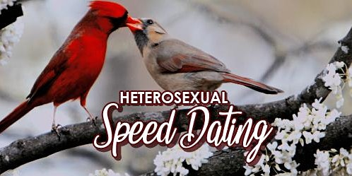 Heterosexual Speed Dating