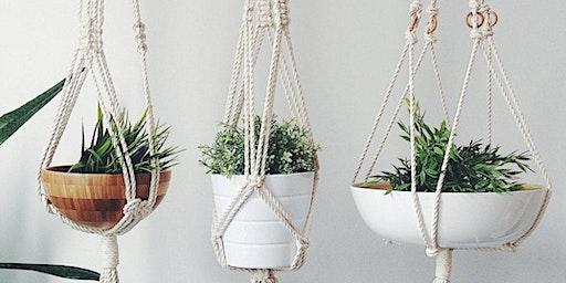 Macrame Your Own Plant Hanger!