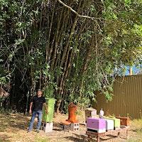 Natural Beekeeping 101 Workshop