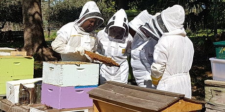 Practical Bee Hive Management tickets