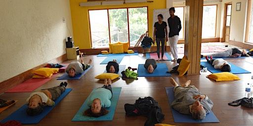 200 hrs yoga teacher training course in Rishikesh India
