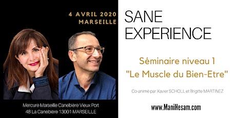 Séminaire SANE Expérience niveau 1 à Marseille, animé par Brigitte Martinez & Xavier Scholl  billets