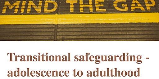 Torbay Adolescent Safeguarding: Minding the Gap