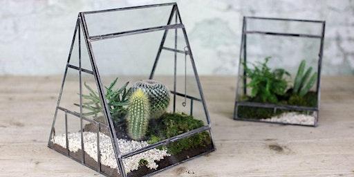 Terrarium Workshop- Learn to fill a terrarium with succulents