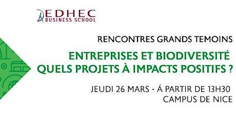 Entreprises et Biodiversité quels projets à impacts positifs ? billets