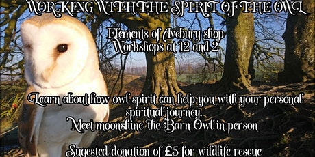 Working with the spirit of the owl - £5pp donation tickets