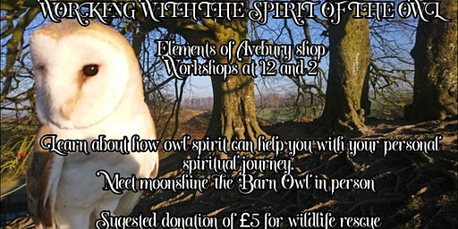 Working with the spirit of the owl - £5pp donation