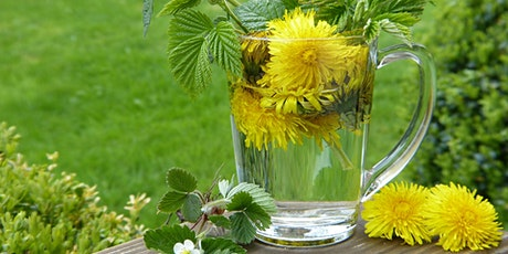 Spring Foraging and Tonic Making tickets
