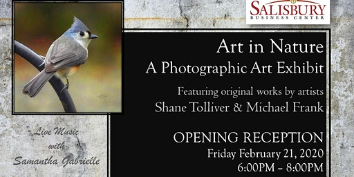 Art in Nature | A Photography Exhibit