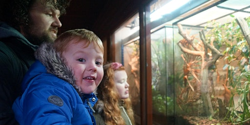 Manchester Museum Family Day 2020