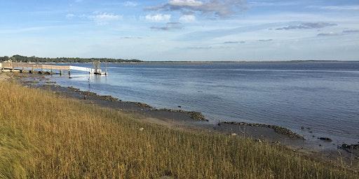 Living Shoreline Citizen Science Monitoring