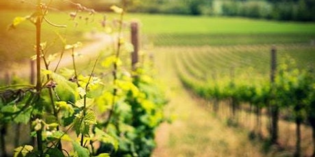 Discover the wines of Australia tickets