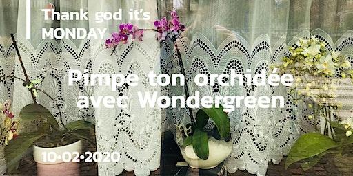 TGIM! Pimpe ton orchidée avec Wondergreen