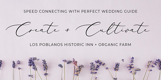 Speed Connecting for Wedding Experts | Perfect Wedding Guide New Mexico