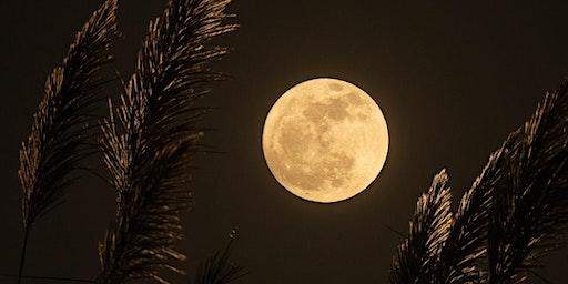 Moon and Self Care - Sunshine Coast