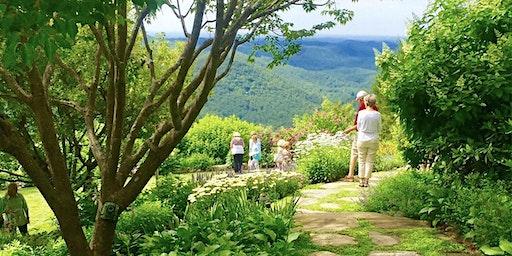 2020 Haywood County Garden Tour
