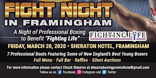 Fight Night in Framingham