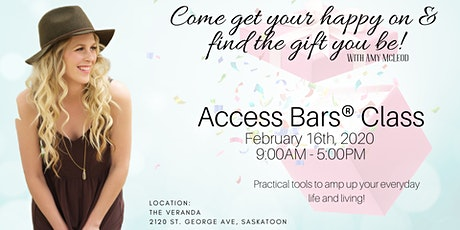 One Day Access Bars® Practitioner Training tickets