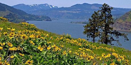 Mosier Plateau Wildflowers, OR tickets