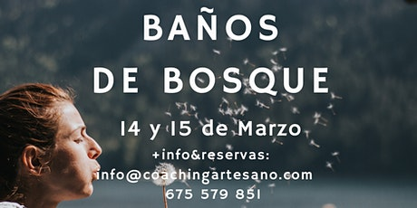 Baño de Bosque 15 Mar. - Bosques de El Escorial entradas