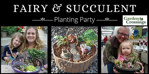 Fairy Garden and Succulent Planting Party