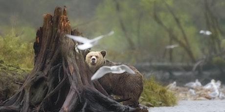 Coffee Talk: The Great Bear Rainforest tickets
