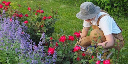 WWL Workshop Series: Basics of Pruning