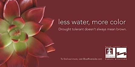 Less Water, More Color Landscape Training Workshop - Garden Design